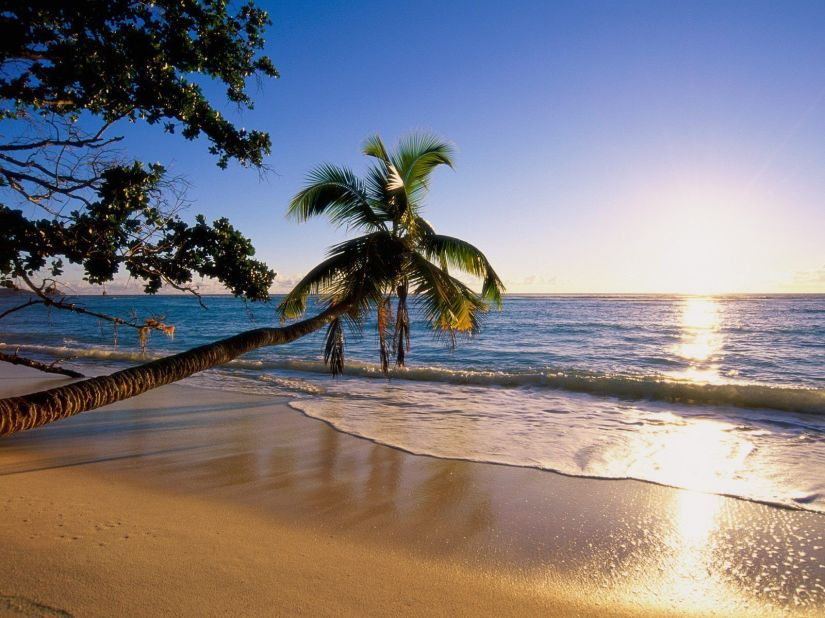silhouette-island_1