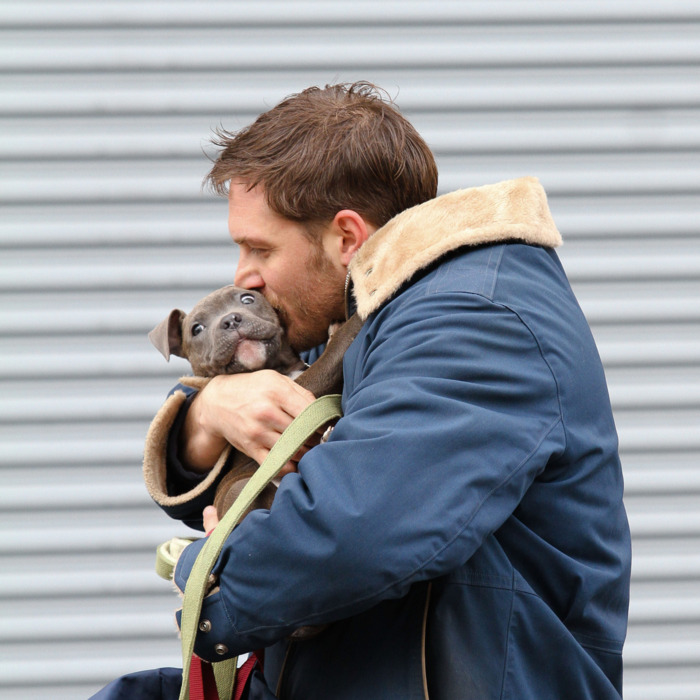 12-tom-hardy-animal-rescue-1.w700.h700.jpg