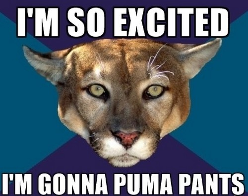 cougar_excited_meme1